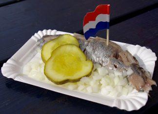 Hollandse_Nieuwe_001