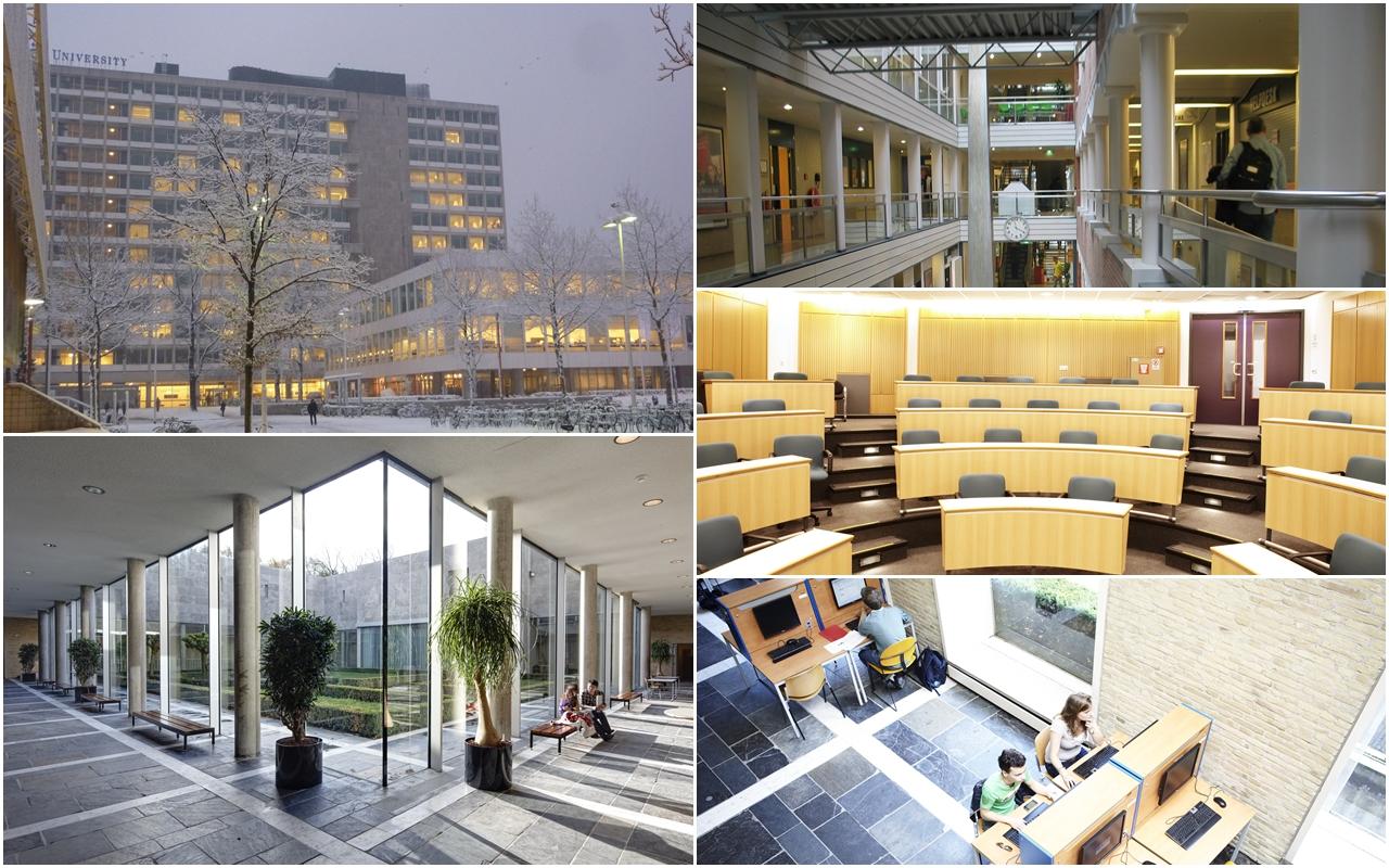 Kết quả hình ảnh cho Tilburg UniversityHà Lan